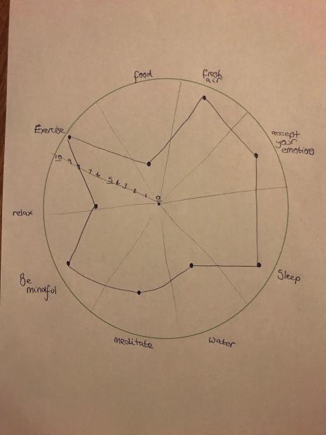 self care diagram